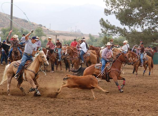 Team Roping - San Pasqual Valley Ranch - May 25, 2009
