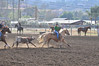 Team Roping Sun-Bar_0106