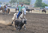 Team Roping Sun-Bar_0055