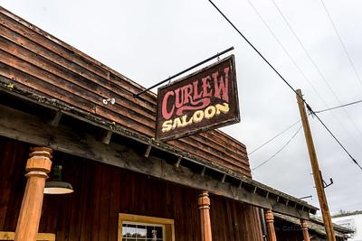 The Curlew Salon.
