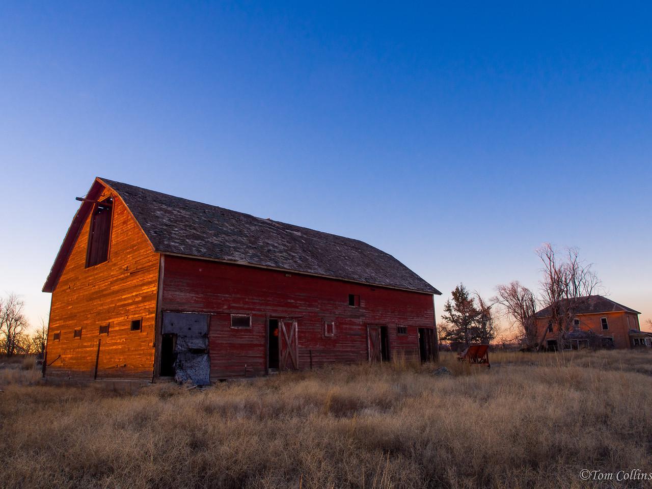 20131121-PB210186 Team Rust ~ Douglas County