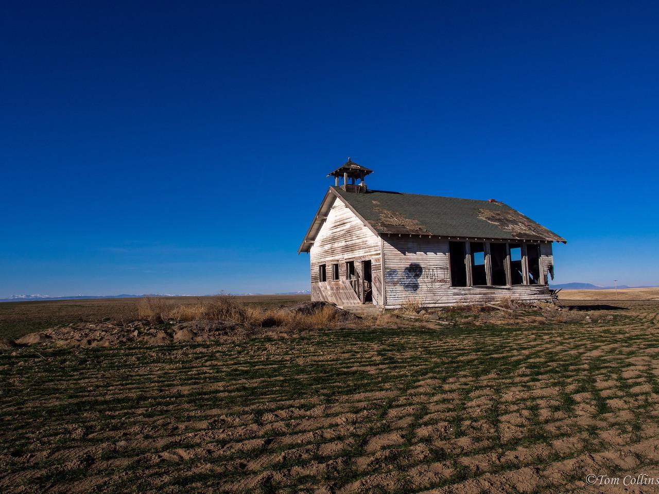 20131121-PB210062-Edit Team Rust ~ Douglas County