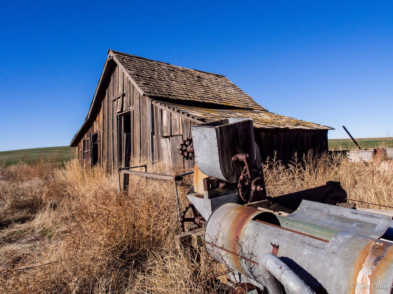 20131121-PB210093 Team Rust ~ Douglas County