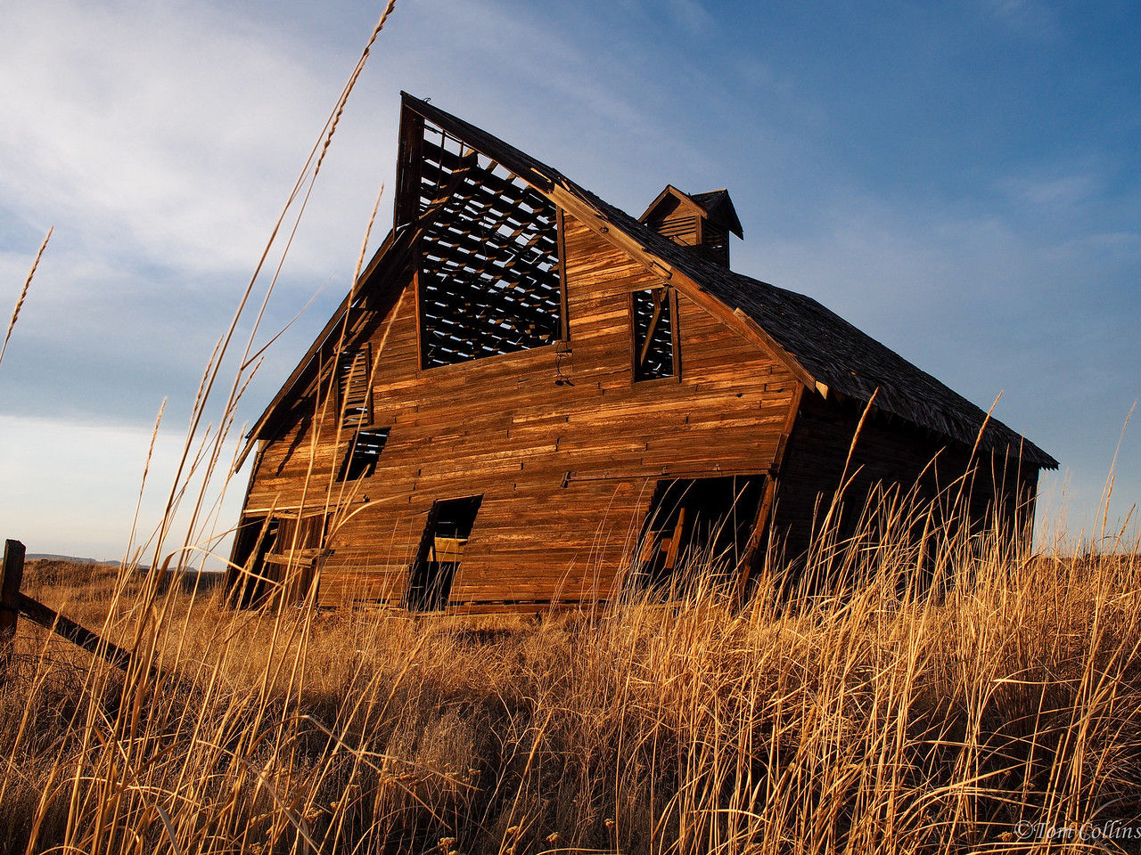 20131122-PB220310 Team Rust ~ Douglas County