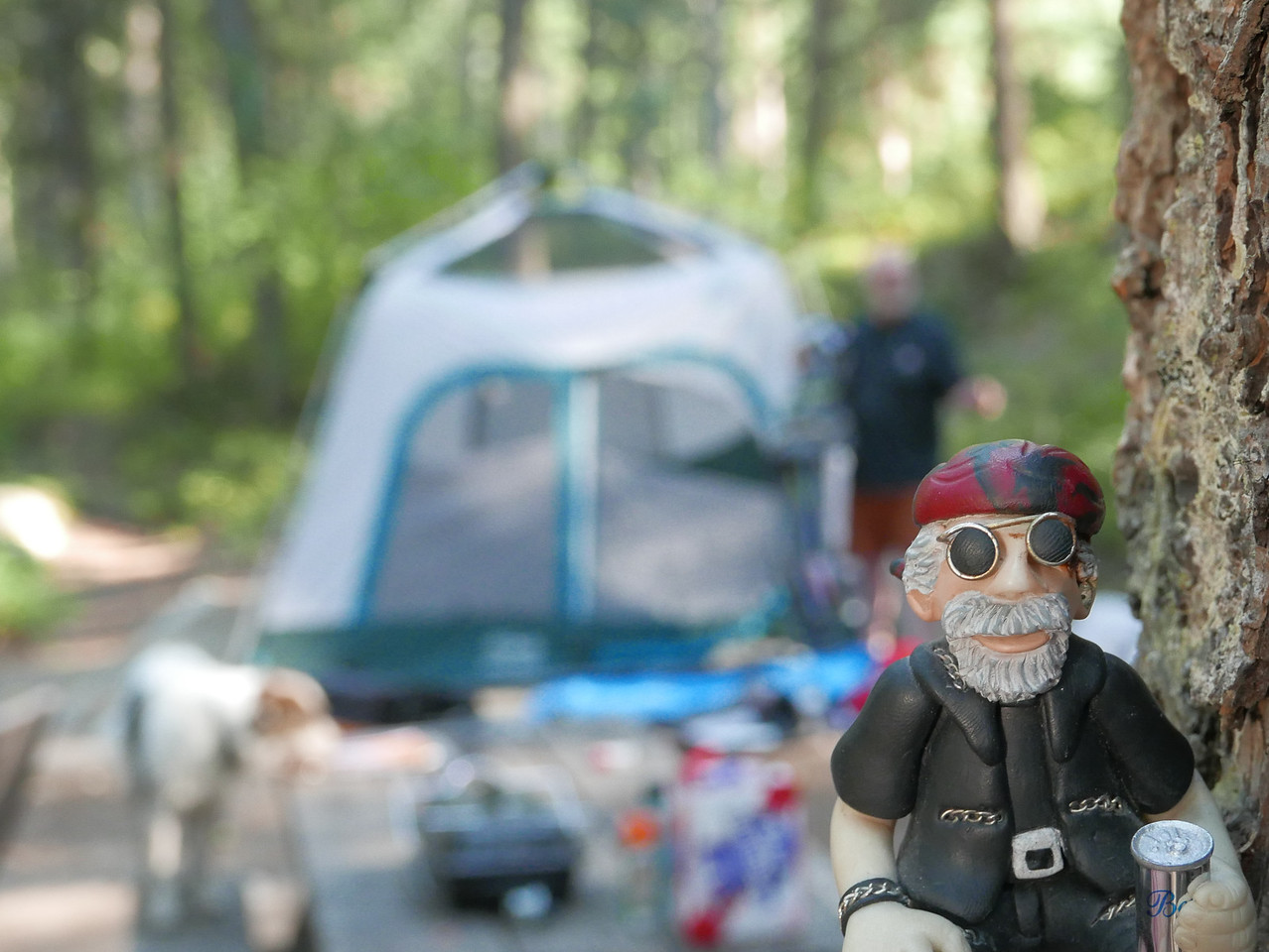 """The """"little Dude"""" abides while watching others set up camp."""
