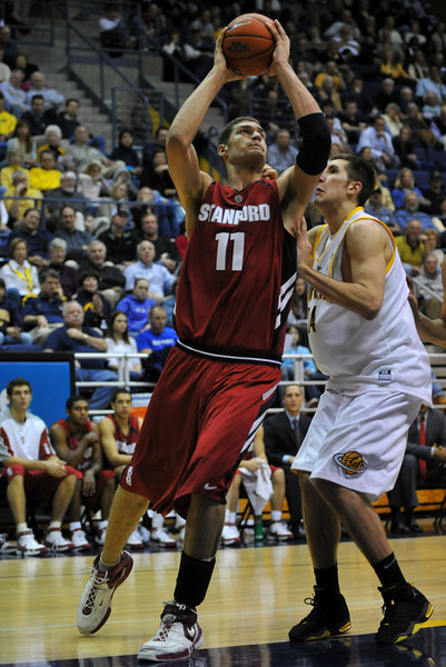 26 January 2008: Brook Lopez during Stanford's 82-77 win over California at the Haas Pavilion in Berkeley, CA.