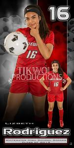 30X60 Lizbeth Rodriguez Soccer Banner