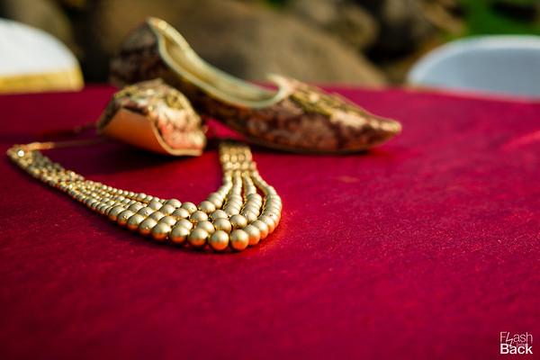 WeddingsByFlashback-PriyankaSujit-379 (_DSC8474)