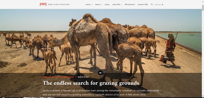"<a href=""https://ruralindiaonline.org/en/articles/the-endless-search-for-grazing-grounds/"">https://ruralindiaonline.org/en/articles/the-endless-search-for-grazing-grounds/</a>"