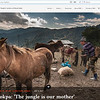 Welcome to the rarely seen world of semi-nomadic Yak Pastoralists (Brokpa) of Arunachal Pradesh. They born and live inside high altitude rain forest . And migrate up-to Tibet border through it just onset of summer.