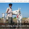 7,000 a litre: milking donkey breeders' dreams?  I  2nd December 2020