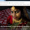 In the Sundarbans, a tiger-shadowed wedding I  04/01/2021