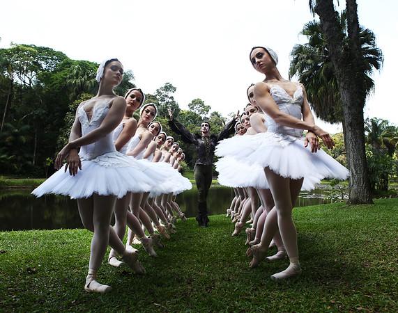 São Paulo Companhia de Dança - Lago dos Cisnes