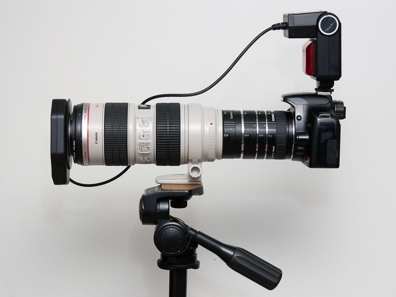 Ring flash on a 70-200 with 93mm of extension tubes