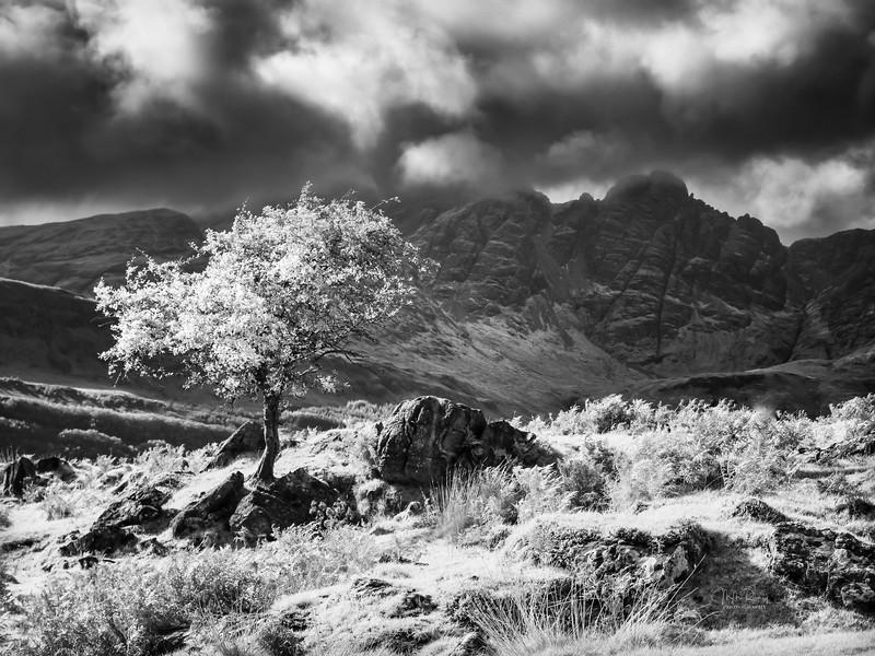 Gathering Storm, Skye