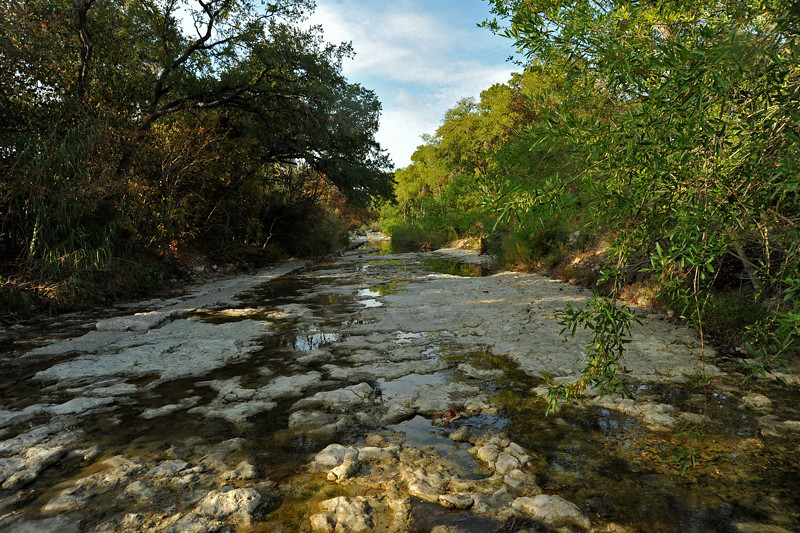 Shoal Creek in Pease Park