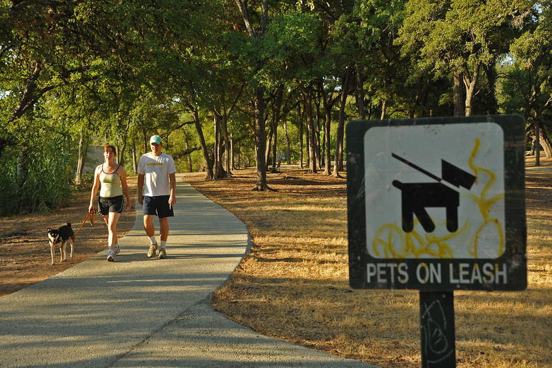 Leashed dogs in on-leash area of Pease Park