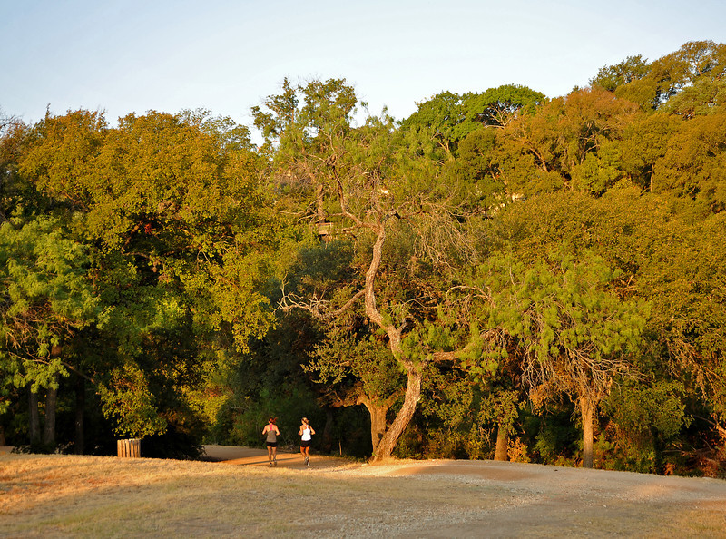 Shoal Creek trail near W 29th