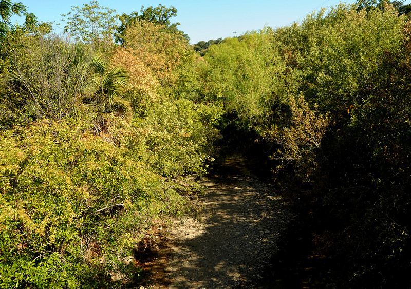 Shoal Creek at Pease Park pedestrian bridge
