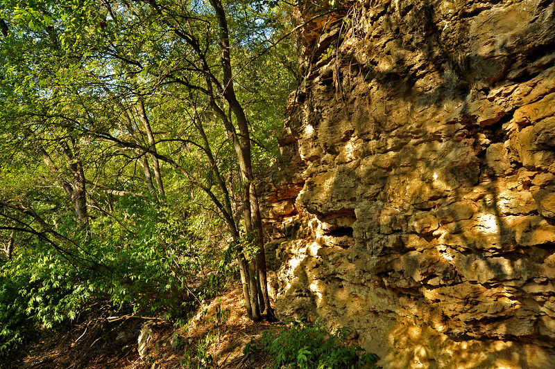 Bluffs on west bank of Shoal Creek between Janet Fish bridge and W 29th (directly west of the exercise stations on Shoal Creek Trail)