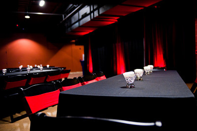 Tedx-Austin-2011-16