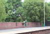 Picture by Liz:<br /> <br /> Council guy watering the Plants at Blaydon