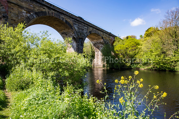 Summer Viaduct, Yarm