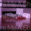 GiveMeAShot com045