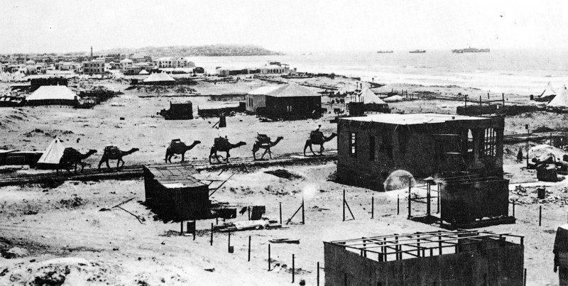 Camels Carrying Sand for the First Buildings