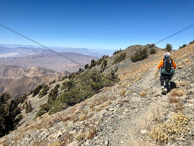 Hiking the Telescope Peak Trail