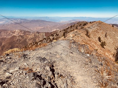 Telescope Peak Trail, Death Valley Trail