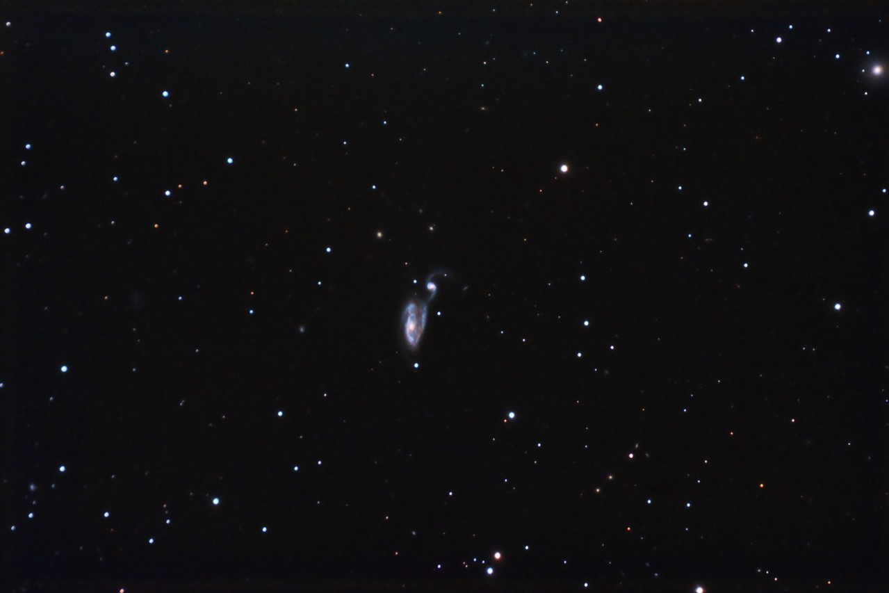 "NGC5395/94 Arp 84 in Canes Venatici, Uncropped, 33 x 10 minutes, F/10, 5/12/2012. Celestron 8"" EdgeHD with Astro-Physics Mach1GTO GEM. SXVR-M25C. IDAS LPS Filter. Hutech OAG. Lodestar. Capture and pre-processed (BPM, Bias, Flats Calibration) with Nebulosity. DeBayered, stacked and post-processed with PixInsight. PHD settings: RA Aggressiveness: 60, RA Hysteresis: 10, Max Dec Duration: 75, Min Motion: 0.50, Calibration Steps: 100 msec, Auto/Resist Switching, Extreme dithering and Settled at < 0.5, 3 sec guiding exposure."