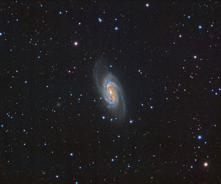 "NGC2903 Galaxy. Pseudo-LRGB. 0.96""/pixel image scale.  Astrodon Red filter,  8 x 7 minutes, 1x1. 2/14/2015.  Astrodon Green filter, 18 x 7 minutes, 1x1. 2/14/2015.   Astrodon Blue filter, 18 x 7 minutes, 1x1. 2/14/2015. Pseudo-Luminance from RGB.  TEC 140 APO F/7 with Astro-Physics A-P1100GTO GEM. QSI660wsg. Guided with QSI OAG and Superstar, Optec Handy Stepper Motor focuser.   Captured and automated with SGP. Calibration and Post-processed with PixInsight. PHD2 settings: RA Aggressiveness: 60, RA Hysteresis: 10, Max RA/Dec Duration: 1000, Min Move: 0.60 pixel, Search Region: 50 pixels, Calibration Steps: 125msec, Auto/Resist Switching, Very High dithering and Settle at < 1.0 for 8 seconds, 5 sec guiding exposure."