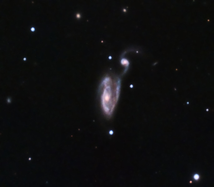"NGC5395/94 Arp 84 in Canes Venatici, 33 x 10 minutes, F/10, 5/12/2012. Celestron 8"" EdgeHD with Astro-Physics Mach1GTO GEM. SXVR-M25C. IDAS LPS Filter. Hutech OAG. Lodestar. Capture and pre-processed (BPM, Bias, Flats Calibration) with Nebulosity. DeBayered, stacked and post-processed with PixInsight. PHD settings: RA Aggressiveness: 60, RA Hysteresis: 10, Max Dec Duration: 75, Min Motion: 0.50, Calibration Steps: 100 msec, Auto/Resist Switching, Extreme dithering and Settled at < 0.5, 3 sec guiding exposure."