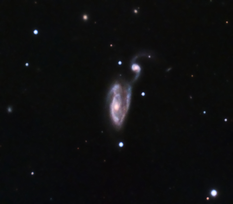 """NGC5395/94 Arp 84 in Canes Venatici, 33 x 10 minutes, F/10, 5/12/2012. Celestron 8"""" EdgeHD with Astro-Physics Mach1GTO GEM. SXVR-M25C. IDAS LPS Filter. Hutech OAG. Lodestar. Capture and pre-processed (BPM, Bias, Flats Calibration) with Nebulosity. DeBayered, stacked and post-processed with PixInsight. PHD settings: RA Aggressiveness: 60, RA Hysteresis: 10, Max Dec Duration: 75, Min Motion: 0.50, Calibration Steps: 100 msec, Auto/Resist Switching, Extreme dithering and Settled at < 0.5, 3 sec guiding exposure."""