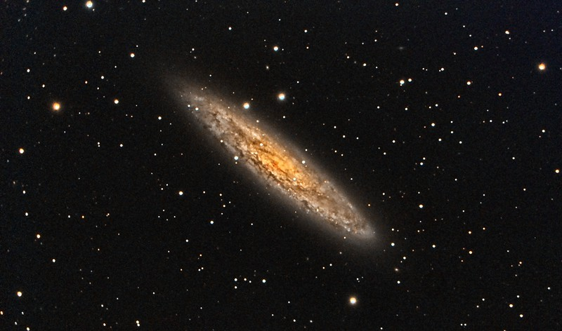 Silver Coin Galaxy, NGC253. 9/10/2010 and 9/11/2010. CPC0800 F/6.3 focal reducer. Mitty Wedge. SXVR-M25C. IDAS LPS Filter. Hutech OAG. Lodestar. 26 x 10 minutes. Total 260 minutes. Processed with PixInSight.