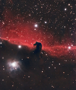 Horsehead Nebula. 11/13/2010. CPC0800 F/6.3 focal reducer. Mitty Wedge. SXVR-M25C. IDAS LPS Filter. Hutech OAG. Lodestar. 24 x 10 minutes. Total 240 minutes. Processed with PixInSight.