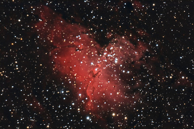 Eagle Nebula, M16. 7/10/2010. CPC0800 F/10. Mitty Wedge. SXVR-M25C. IDAS LPS Filter. Hutech OAG. Lodestar. 24 x 10 minutes. Total 240 minutes. Processed with PixInsight.