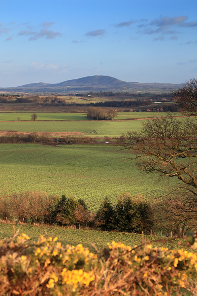 The Wrekin viewed from Lyth Hill.