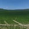 IMG_6433 Panorama.jpg