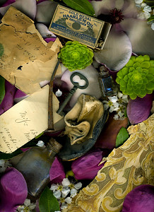 A leather baby shoe, antique housewares, medicine bottles, long lost love letters and blooms of promise inhabit Pinney House.