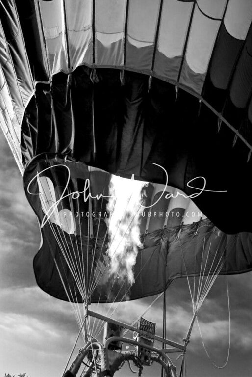 Black and White Balloon Pics