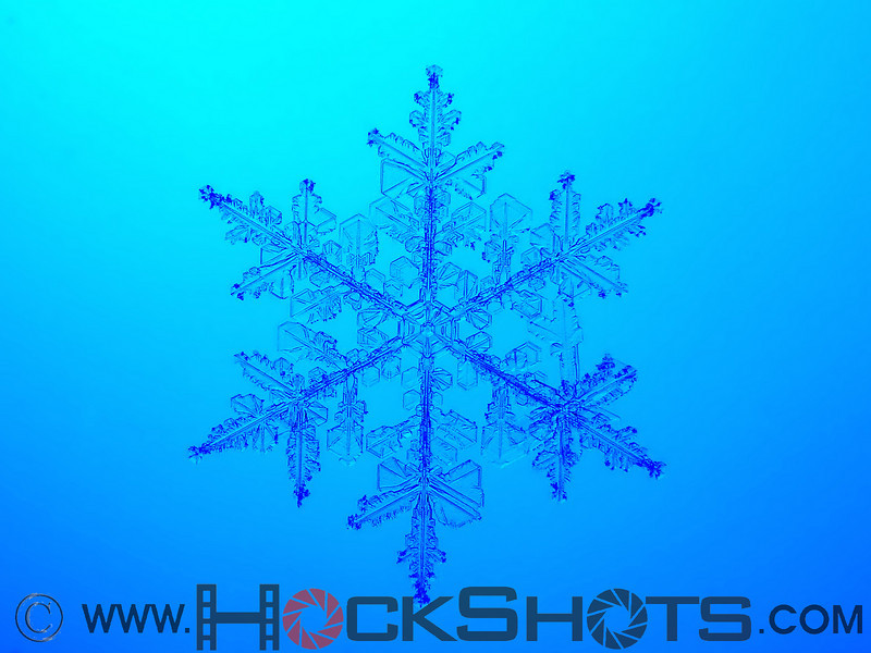 This is the same snowflake as the previous image, but with different lighting. Which do you like better?
