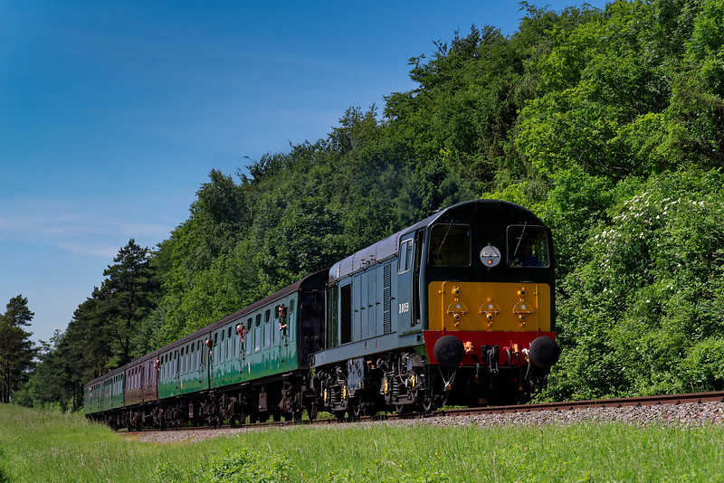 20059 exits the pine trees, with the 10:55 Alresford - Alton, on 3rd June 2018.