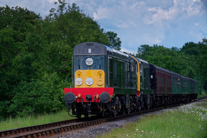20059 / 20001 at Bluebell Crossing with the 15:20 Alton - Alresford, on 3rd June 2018.