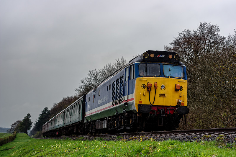50027 at Stable Lane, with the 11:55 Alresford - Alton, on 22nd April 2016.