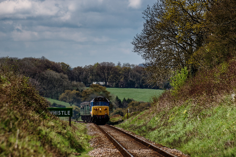 50027 at Wanders Crossing, with the 11:15 Alresford - Alton, on 23rd April 2016.