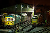 55009 / 33109 / 37905 and 20087 stabled overnight at Ropley, on 27th April 2013.