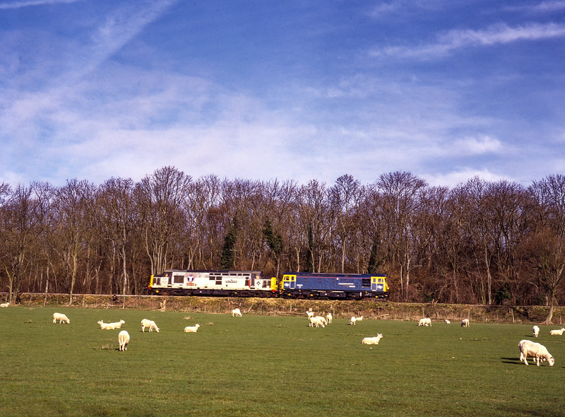 33109 and 37906 passing Baigents Copse with a light engine move from Ropley to Alton, <br /> on 5th March 2000. Scanned Transparency.