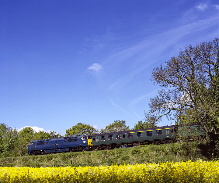 """D1013 """"Western Ranger"""" at Stable Lane with the 09:55 Alton - Alresford, on 15th May 2005. Scanned Transparency."""